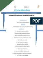 YACIMIENTO DE GAS SECO.docx