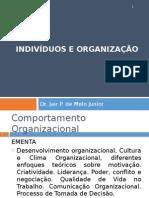 Indivíduos e Organização