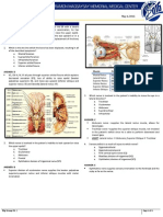 BRT Anatomy - Neuroanatomy
