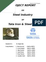 Project report on TATA Steel