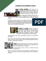 Guia Para Atender a Los Guerreros y Orula