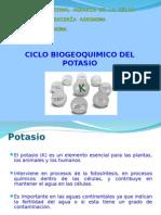 Ciclo Del Potasio (1)- 2