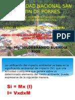 calificacion de impacto ambiental