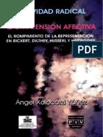 Xolocotzi Yañez Angel - Subjetividad Radical y Comprension Afectiva El Rompimiento de La Representacion en Rickert Dilthey Husserl Y Heidegger