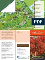 Native Trees Tour