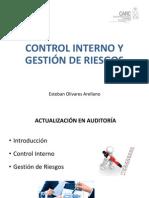 Control Interno y Gestión de Riesgos