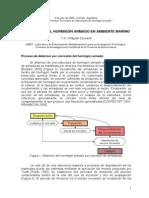 7 - Corrosión Del Hormigón Armado en Ambiente Marino - Y.villagrán