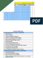 Formato de Matriz de Peligros Proceso Ejecución Proyecto Consultora Agosto 2011
