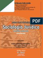 Libro Sociologia Juridica 2015