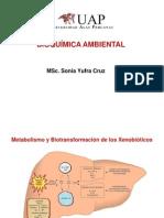 4.1. BQMA (Metabolismo y Biotransformación de Xenobióticos)