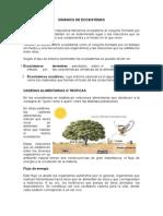 Dinámica de Ecosistemas