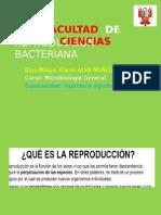 Reproduccion y Desarrollo Clase