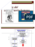 Proceso Del Conocimiento Humano