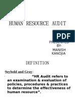 Human Resource Audit