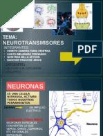 Neurotransmisores y Neuropeptidos Ppt