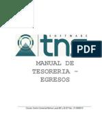Manual Tesoreria para TNS
