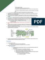 RE-Golgi.pdf