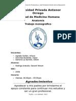 Anatomía Radiográfica UPAO