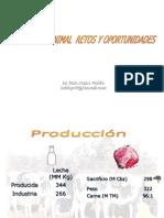 Produccion Animal 1 - 2013[5]