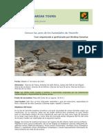 Programa Iniciación Aves Humedales Tenerife - Birding Canarias