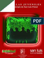 018PandillasJuveniles en SanLuisPotosi Estudio
