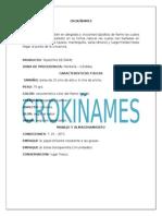 CROKIÑAMES
