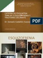 Psquiatria Tema 5