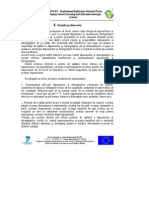 GherghiceanuNicoleta_4.pdf