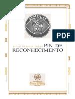 Pin de Reconhecimento.docx