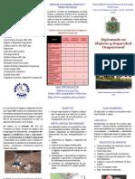 Brochure Higiene2011