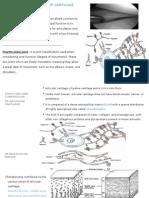Biomechanics of Cartilage