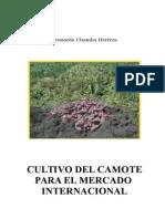 cultivo-del-camote (1)