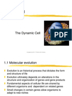 Chapter01 the Dynamic Cell