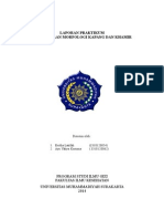 Laporan Praktikum Mikrobiologi Kapang & Khamir