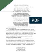 Grotesco y Crisis en Argentina