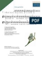 Klavier Fuchs Du Hast D-Dur