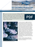 How to Produce $20 Million Worth of Fish