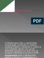 Organizarea Structurala a Intreprinderii