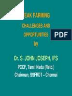Teak Farming