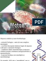 3motoare moleculare