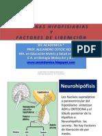 HORMONAS HIPOFISIARIA Y FACTORES DE LIBERACION