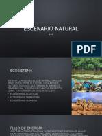 Equipo 2 - Escenario Natural_S5B
