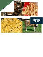 animales de granja.docx