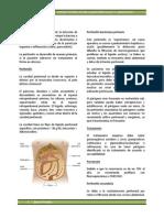 Capítulo 6 - Infecciones Intraabdominales y Abscesos