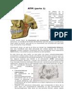 Articulación Temporomandibular (Parte 1)