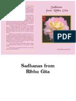 Sadhanas From Ribhu Gita