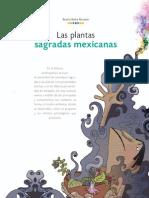 Barba - Las Plantas Sagradas Mexicanas
