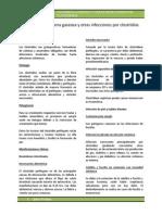 Capítulo 19 - Gangrena Gaseosa y Otras Infecciones Por Clostridios