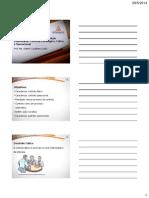 VA_Processos_Gerenciais_Aula_07_Tema_07_Impressao.pdf