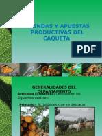 Agendas y Apuestas Productivas Caquetá.pptx